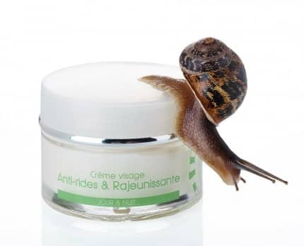 cosmetique à base de bave d'escargot BIO de Vendée